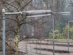Philips SRM (sander_sloots) Tags: lampposts lantaarnpalen rotterdam philips srm lanterns armaturen bomen trees straatverlichting lichtmasten lampadaires lichtmast straatlamp openbare verlichting public lighting lamps lampen sox lagedruk natriumlamp sodium lamp