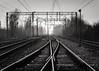 empty tracks (Krzysztof Krr) Tags: sony a6000 nex selp1650 bw tracks