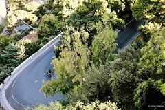 Amer (anton.anfecore) Tags: sicilia landscape tree trip road bike sicily italy