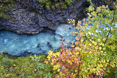 A Different Sort of Rainbow (gwendolyn.allsop) Tags: leutaschklamm gorge water blue glacial tree leaves foliage fall autumn color germany austria hike