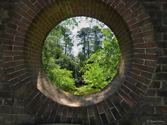 Hole in the Wall  [Explored] (acadia_breeze4130) Tags: williamsburg virginia window wall hole opening circular garden gardens colonial historic tree green sky travel springtime vacation round sx60hs karencarlson light