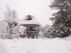 P1011336 (Rambalac) Tags: asia japan lumixgh5 forest snow water азия япония вода лес снег