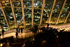 London from the sky 🌃 (giuliaph.) Tags: london londra skygarden sky skyline city citylights uk unitedkingdom english england night lights garden cool loveit londonnight panorama view