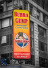 Signs Bubba Gump (Singing With Light) Tags: 12th 2017alpha6500 7thave gulfbeach milford mirrorless nyc newyork singingwithlight sonya6500 hope manhattan photography september singingwithlightphotography sony