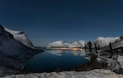 """Magasuget"" at Senja (Lena Pettersen.) Tags: view senja northernnorway norway winter reflection moonlight"