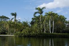 monkey island (ucumari photography) Tags: ucumariphotography naples florida fl zoo january 2018 dsc5876