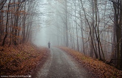 The Man that came out of the Fog. (andreasheinrich) Tags: landscape forest path trees fog man january winter cold misty moody germany badenwürttemberg neckarsulm dahenfeld deutschland landschaft wald bäume nebel mann januar kalt neblig stimmungsvoll nikond7000