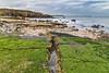 Graham Sands (robinta) Tags: coast seaside ocean sea seaandsand rock seaweed southshields england ngc pentax sigma1770 ks1 pentaxart rocks sky clouds longexposure coastal shore water tide waves