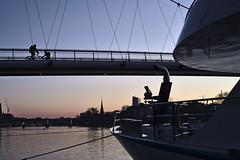 Blue Hour at the river :: Frankfurt am Main (tmertens0) Tags: frankfurt hessen deutschland europa europe germany stadt city winter morgen morning blue hour blaue stunde sunrise sonnenaufgang kalt cold pentaxm 50 14 main flus river