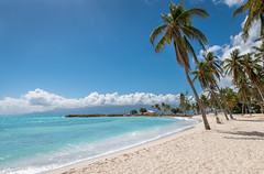 Classical Caribbean view (Pierre de Champs) Tags: beach guadeloupe gosier caribbean blue sunshine tropical fwi antilles outremer palmtrees ilesdeguadeloupe photographer photography clouds nikonphotography d750 nikon