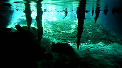 Through the Roof (Eye of Brice Retailleau) Tags: angle beauty composition landscape outdoor paysage perspective scenery scenic view extérieur earth travel vista reflection reflet mirror light water waterscape eau calme nature natural america mexico mexique yucatan cenote cave swimming snorkeling