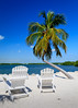 Time to dream of warmer weather... (USpecks_Photography) Tags: beach palmtree chairs sunshine vacation solitude peace contemplation floridakeys islamorada