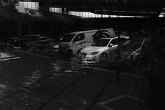Drown (roryteng.777) Tags: bw blackandwhite sydney streetphotography