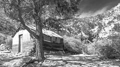 Live Oak Mine (joeqc) Tags: mnp mojave mojavepreserve mono monochrome mountains mine black bw blancoynegro blackandwhite white greytones