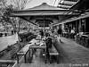 An Alfresco Lunch (orgazmo) Tags: streetphotography people sydney australia downunder darlingharbour nsw newsouthwales blackwhite monochrome olympus omd em1mk2 mzuiko12100mmf4ispro micro43s m43s mft
