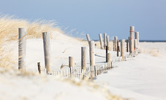 Dune Fencing (arlene sopranzetti) Tags: ibsp nj winter beach ocean sand dunes fence grass