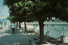 (homesickATLien) Tags: 35mm film art kodak analog expired mjuii olympus asia motion movement backpacker backpacking myanmar burmese burma mandalay city travel peace harmony freedom