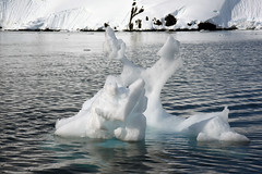 Brown_2017 12 11_3117 (HBarrison) Tags: harveybarrison hbarrison antarctica antarcticpeninsula paradiseharbor brownstation arctic antarctic arcticantarctic
