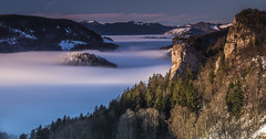 Sea of fog at Ankenballen (simon_mangold) Tags: landscape simon mangold bölchen belchen baselland baselbiet basellandschaft eptingen langenbruck winter snow schweiz svizzera suisse swiss switzerland sunrise sonnenaufgang 1124 2470 70200 lee filters neutral density trees forest sky chasseral sun glow morning hill canon eos 5d mark iv waldenburg baselcountry mountain outdoor canyon ridge peak sunset mountainside foothill serene sea fog white