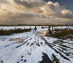 West Wales Wonderful Wet Winter (shawn~white) Tags: canon6d ceredigion cymru ef1635f4lis wales westwales wideangle countryside farm fence field grassland grazing landscape pasture peaceful puddle rural serene serenity snow water wet winter