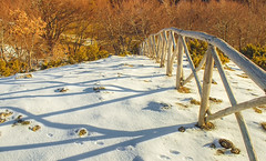 Snow's Effect (ToniX Jesse) Tags: ifttt 500px trees winter nature white snow fence shadows mountain
