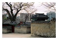 untitled by J. Prestrot - ♈ 2006 / Changdeokgung, Séoul, Corée du Sud