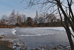 "Frozen ""Prince's pond"" (Karel Suchánek) Tags: winter pond frozen frost ice sunshine afternoon velkáhleďsebe lumix lx100 knížecírybník knížák"