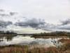 Clouds over lake 02-20180110 (Kenneth Cole Schneider) Tags: florida miramar westmiramarwca