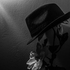 The romantic gentleman (Manos Kou) Tags: gentleman black white hat flower romantic romance vintage dark low light wall shadow