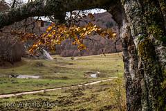 Liza, Valle de Ansó, Huesca (Jose Antonio Abad) Tags: liza paisaje veral aragón pública naturaleza joséantonioabad valledeansó españa huesca jacetania lajacetania es