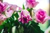 20 ~ 365 (BGDL) Tags: lightroomcc nikond7000 bgdl no6~3652018 niftyfifty afsnikkor50mm118g roses witheringrose bouquet sadface