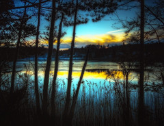 So beautiful is where I live (Bessula) Tags: bessula nature lake evening forest landscape skay tree reflection scenery sweden country tranquil peaceful calm winter frost water rushes snow coth5 ligt