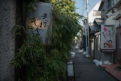 hand-made soba restaurant (kasa51) Tags: sign handmade soba japanesenoodle alley tokyo japan 手打ちそば bamboo snow restaurant