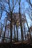 Tall, tall trees (debstromquist) Tags: silverspringsstatefishandwildlifearea stateparks parks plano il illinois thanksgivingweekend latefall lateautumn talltrees trees hills fallcolors autumncolors