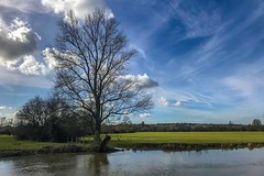 Riverside (Just landscapes) Tags: essex iphone7 iphone england britain uk rural paysage landscape outside country countryside riverbank riverside river trees