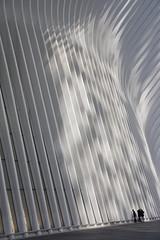 Oculus (knkppr) Tags: newyorkcity oculus reflection light shadow scale