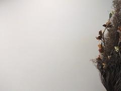 Un Titano per una Torta al wafer (The Shy Photographer (Timido)) Tags: sanmarino san marino europe shyish