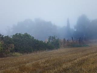 nieblas de septiembre