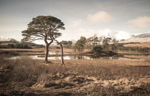 """Loch Tulla • <a style=""""font-size:0.8em;"""" href=""""http://www.flickr.com/photos/110479925@N06/26762140788/"""" target=""""_blank"""">View on Flickr</a>"""
