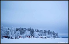 Boathouses and frosty trees at the lake in winter. (mmoborg) Tags: mmoborg winter snow ice frost boathouses