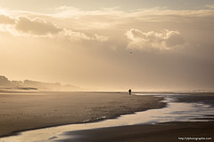 apocalyptic atmosphere (ylemort) Tags: nature beach outdoors sand sunset people silhouette sky sea men solitude oneperson sport sunlight walking sun backlit tranquilscene scenics landscape everypixel canon canon5dmkiv belgique belgium zee nordzee