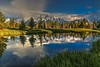 Schwabachers Landing Sunrise Reflections - Grand Teton National Park (Cole Chase Photography) Tags: grandtetonnationalpark wyoming reflections
