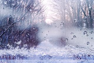 Winter in Windows