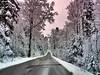 Rosa Himmel (almresi1) Tags: effect pink wald wood forest winter street strase weg way snow schnee nature landschaft landscape althütte ebni murrhardt
