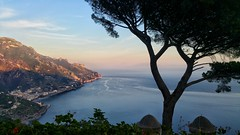 View to Ravello (uffagiainuso) Tags: amalficoast costieraamalfitana ravello landscapes seascapes blusky sea coast mare blu eveninglights panorama paisage paesaggio landscape tree silhouette beautifulview topview pointofview evening seaside