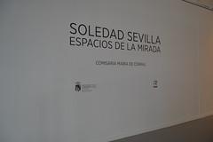 SOLEDAD SEVILLA (1)