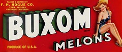 Crate Label: Buxom Melons (1940s). Packed & Shipped by F.H. Hogue Co., Yuma, Arizona & Firebaugh, California (lhboudreau) Tags: melon melons cratelabel label crateboxlabel crateboxlabels text art artwork illustration california buxombrand hat lady woman meloncratelabel lovelylady brand branding advertisement advertising californiamelons shippingcratelabel pinup buxommelons buxombrandmelons 1940 1940s sign yumaarizona firebaughcalifornia hoguecompany hogueco fhhogueco fhhoguecompany produceofusa redhead redhair strawhat sandals sandal logo produce product fruit fruits consumergoods boxlabel