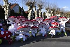 DSC8038 (Starcadet) Tags: dieburg dibborsch fastnacht dibojerfastnacht karneval prty brauchtum parade umzug fastnachtszug fastnachtdienstag fasching fasnet kostüme verkleiden südhessen cosplay spas humor clowns