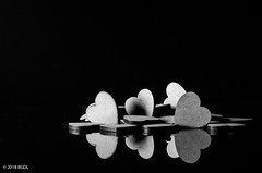 More Hearts! (BGDL) Tags: lightroomcc nikond7000 bgdl niftyfifty afsnikkor50mm118g blackandwhite reflections hearts valentinesday 7daysofshooting week32 allyourheartdesires blackandwhitewednesday
