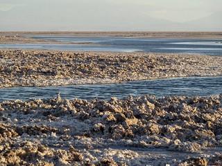 Salar de Atacama / salt lake / San Pedro Chile